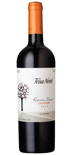 Vinho Terranoble Carmenere Reserva Terroir 750 ml